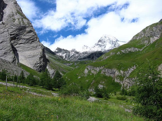 Foto 2 zur Tour: �ber zwei gro�e Keese auf den Romariswandkopf (3511 m)